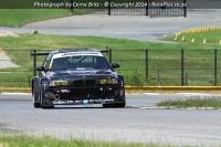 BMW-Race-Series-2014-03-09-012.jpg